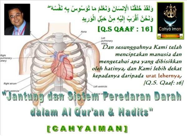 Jantung&SistemPredarandara AlQuran&Hadits